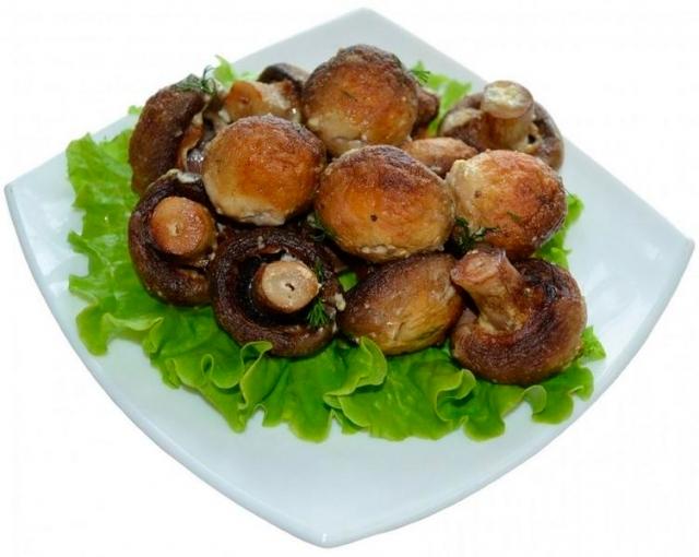 Шашлык грибов фото